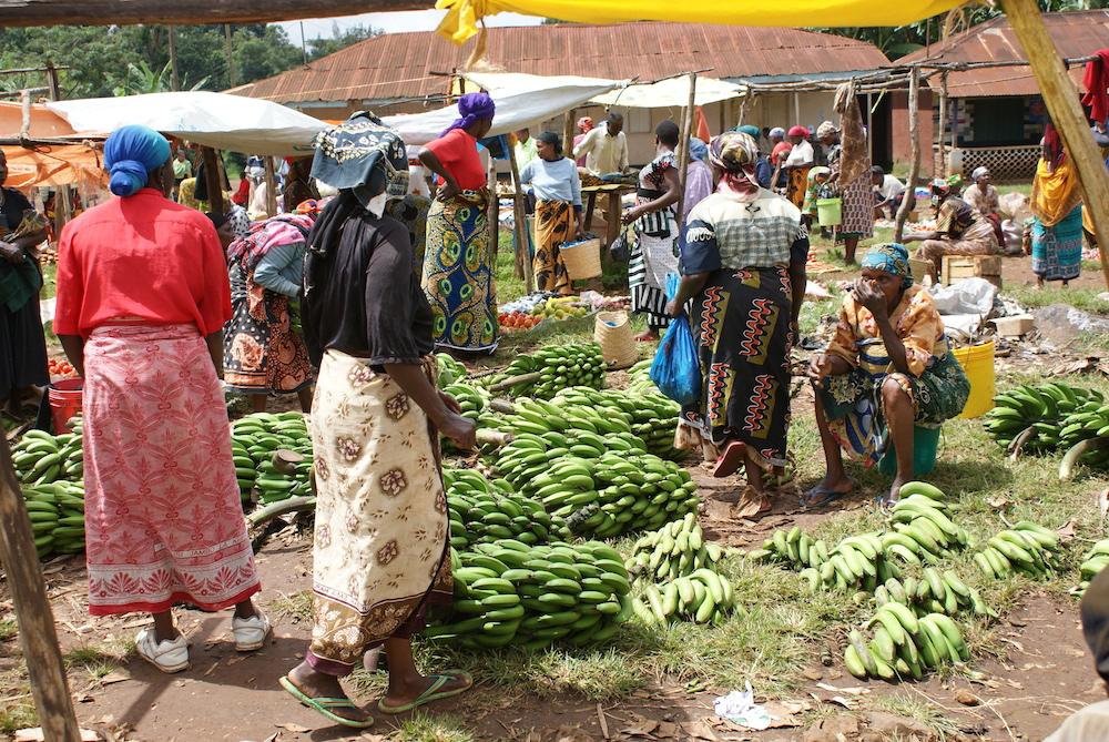 Market in Tanzania_Africa_travel