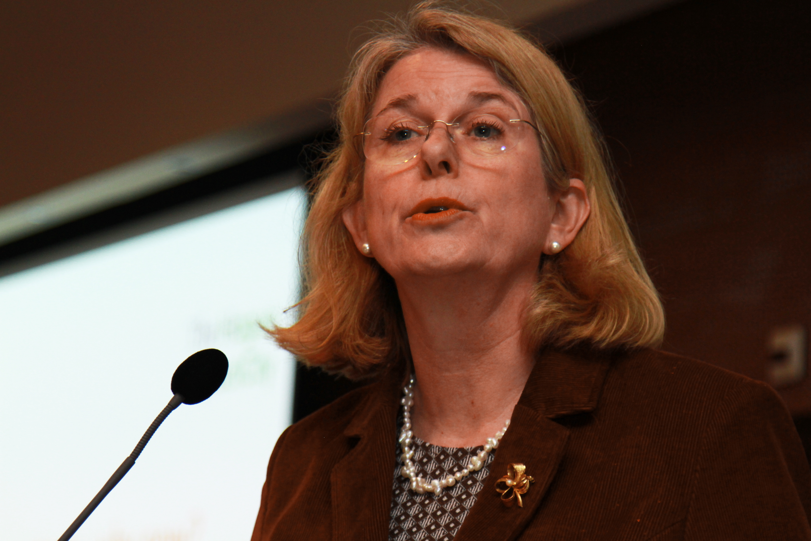 Pauline Krikke Mayor The Hague