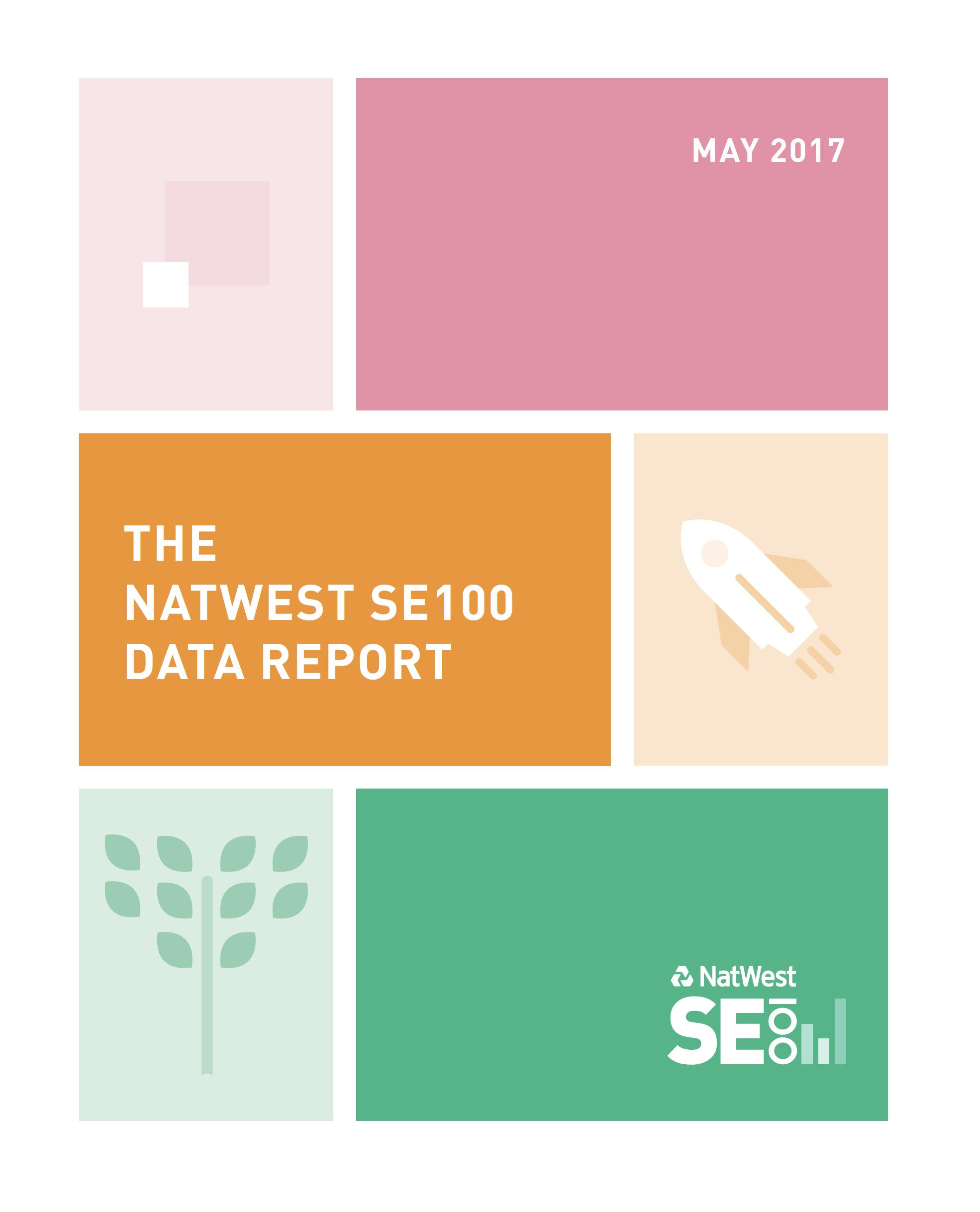 SE100 report