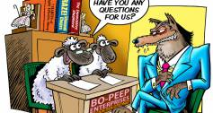 Sheep and Wolf cartoon