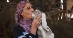 Kiva Refugee Investment Fund