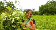 IIX Women's Livelihood Bonds - woman in South Asia