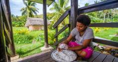 Coconut oil making in Fiji