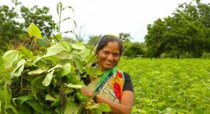 IIX Women's Livelihood Bonds - woman in South Asia