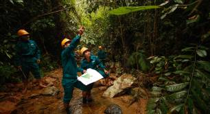 Forest education in Vietnam