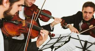 A string quartet playing in harmony