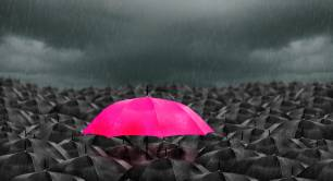 Pink umbrella among black umbrellas